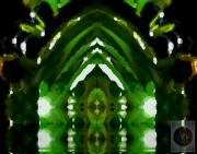 green-cathedral-irene-marini